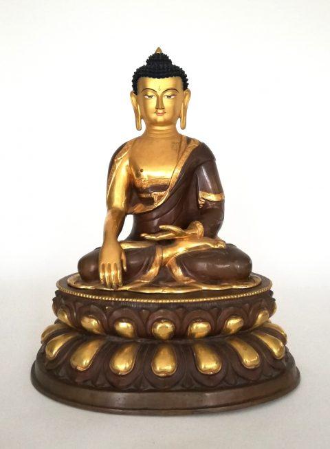 Buddha Nepal
